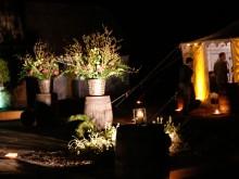 Traditional Irish Night